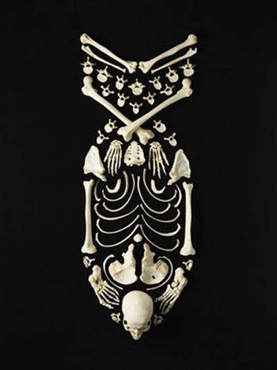 Francois-Robert-Bones-art-8
