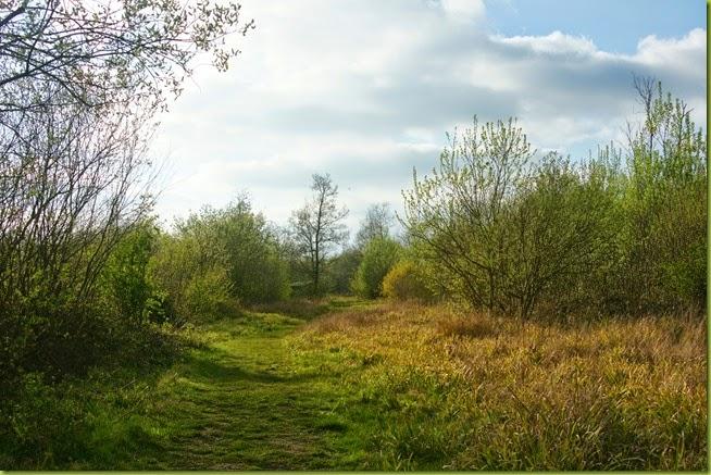 Spring footpath