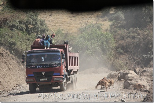 Travel - truck and goats