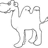 camello10.jpg