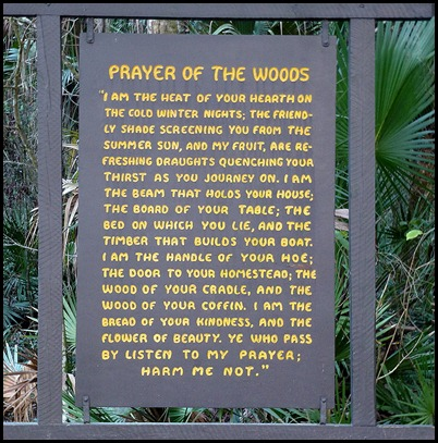 02b - River Rapids Trail - Prayer of the Woods