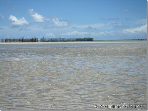 Praia de São Miguel dos Milagres Alagoas Currais de Pesca