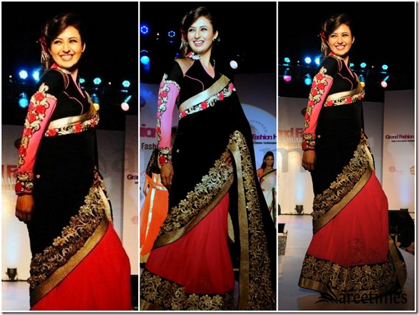 Parineeti_Chopra_Dual_Saree