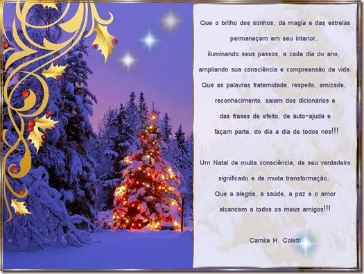 cartao natal 2013-camila-coletti