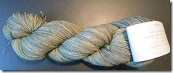 Madelinetosh Sock - Grey Garden