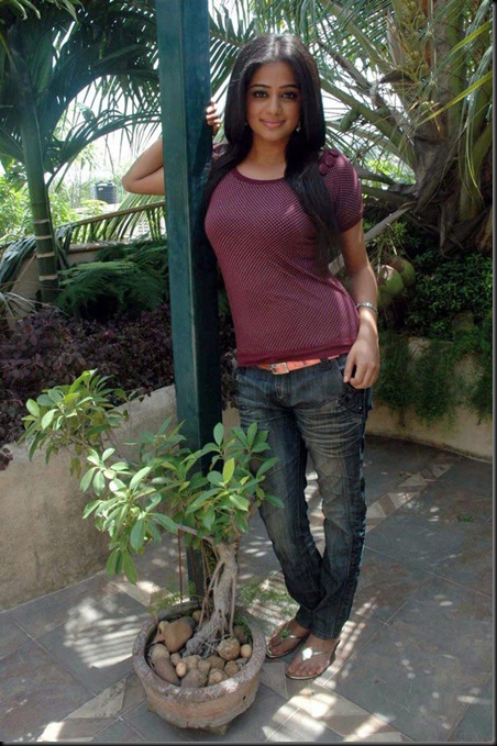 Priyamani Photo Shoot (21)