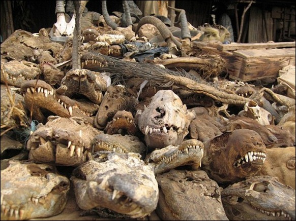 World's Largest Voodoo Market - Togo Akodessewa 04