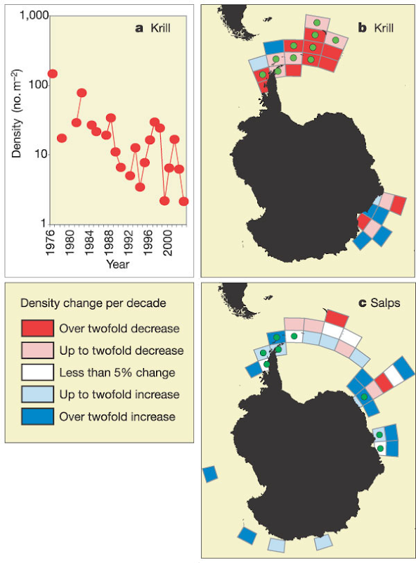 Temporal Change of Krill and Salps in the Southern Ocean, 1926-2003. a, Krill density in the SW Atlantic sector (4,948 stations in years with >50 stations). Temporal trends include b, post-1976 krill data from scientific trawls; c, 1926–2003 circumpolar salp data south of the SB.  Atkinson, et al., 2004