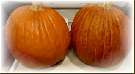 Pumpkins before after