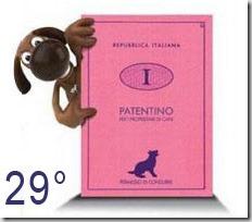 Patentino-cani29