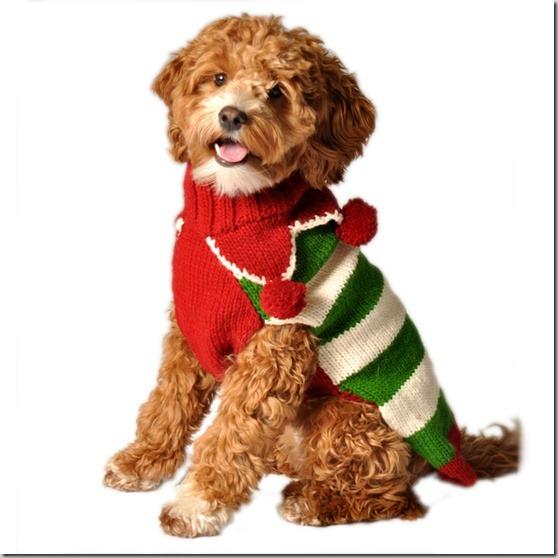 perro gorritos navidad (21)