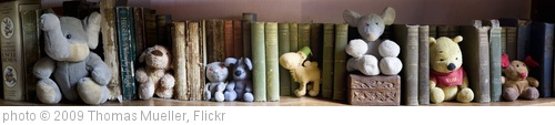 'Bookworms' photo (c) 2009, Thomas Mueller - license: http://creativecommons.org/licenses/by-nd/2.0/