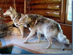 2306 Manitoba Riding Mountain National Park - Visitor Centre Wasagaming