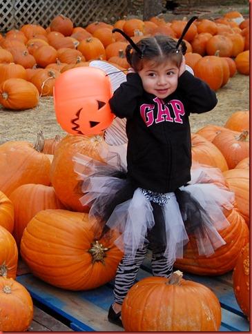 Buda Halloween 2011 008