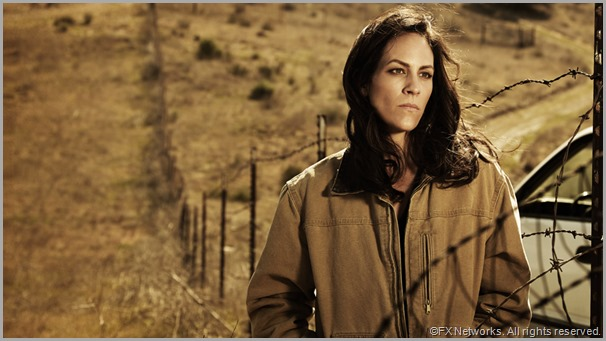 Annabeth Gish as Charlotte Millright in THE BRIDGE. CLICK to visit the official show site.