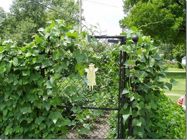 garden 12-jul-2004