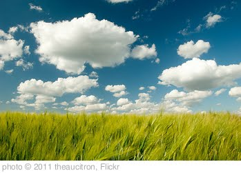 'Clouds' photo (c) 2011, theaucitron - license: http://creativecommons.org/licenses/by-sa/2.0/