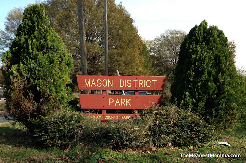 Mason District Park