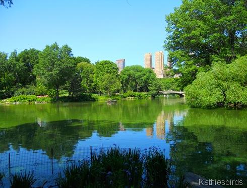 22. Centra; Park lake-DSCN1184