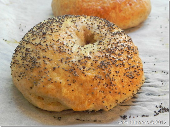 poppy-seed-bagels-tuesdays-with-dorie-2