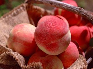 Bon à savoir : Les fruits