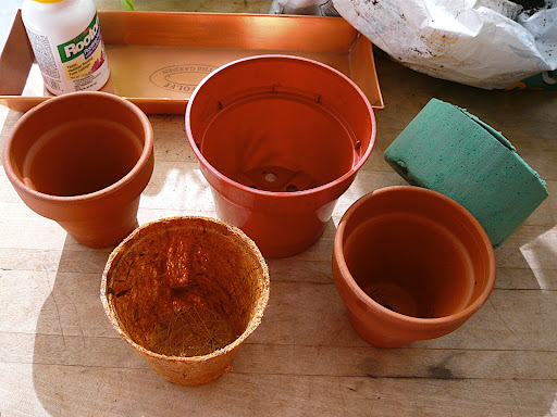 I'm trying terra cotta, plastic and coir pots to see which ones will work the best. Coir is processed coconut fiber that's used primarily in orchid potting mixes and has recently been showing up as pots.