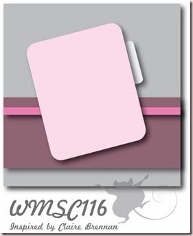 WMSC116