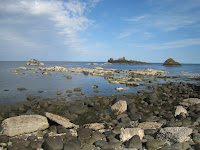 Edge of Giant\'s Causeway