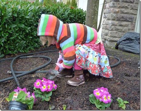 Vivi Planting Primroses 2