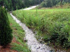 Drainage stream 1