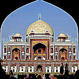 Sahenshah's Rest by Pranjal Jain - Buildings & Architecture Statues & Monuments ( history, tomb, mouselem, monument, india, historical, architecture, humayun's tomb, humayun, delhi,  )