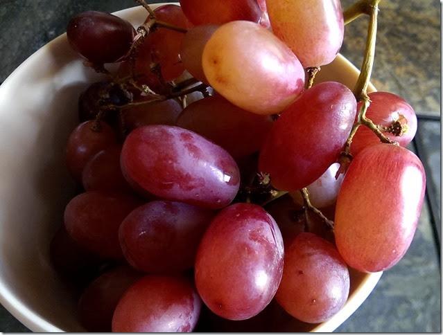 grapes-public-domain-pictures-1 (2255)