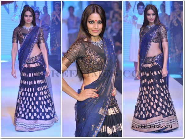 Designer_Saree_@_IIJW_2012 (1)