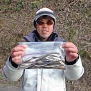 20130104e_ワカサギ釣果(小原正義氏)004.jpg