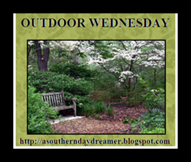 Outdoor-Wednesday-logo_thumb1_thumb1[2]