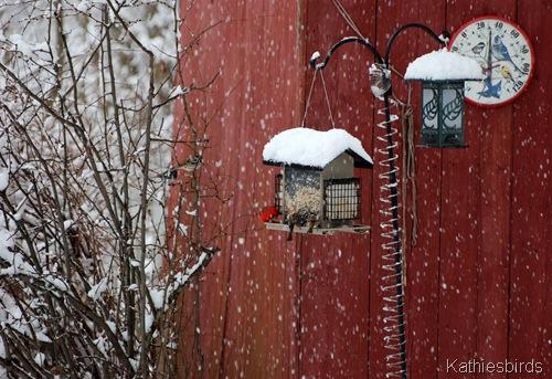 2. snow-kab