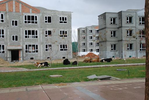 Xinjiang, Haba He - Nouvelles constructions
