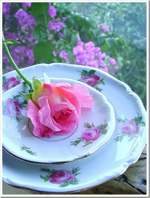 Dic.29,09-arreglos rosas y jardìn 444