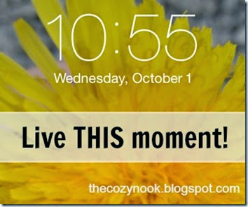 Live THIS moment - The Cozy Nook