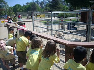 Enjoying the farm animals!