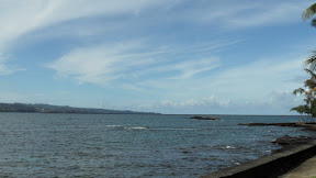 Big Island-Hilo-Hawaii2011-Ines-SAM_1475.JPG