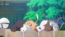 [rori] Sakurasou no Pet na Kanojo - 01 [C026AA28].mkv_snapshot_02.36_[2012.10.10_08.05.46]