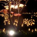 Nara Festival.jpg