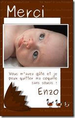 """Carton de remerciements """"Les bébés naissent dans des oeufs en chocolat"""" fond chocolat"""