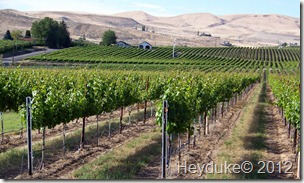 Zillah Washington wineries