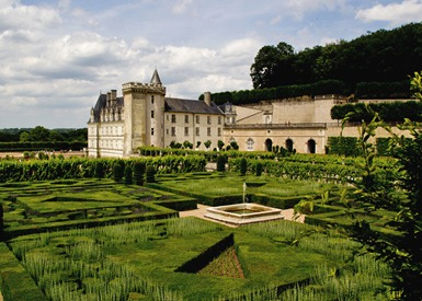 villandry-lavender_edited-1