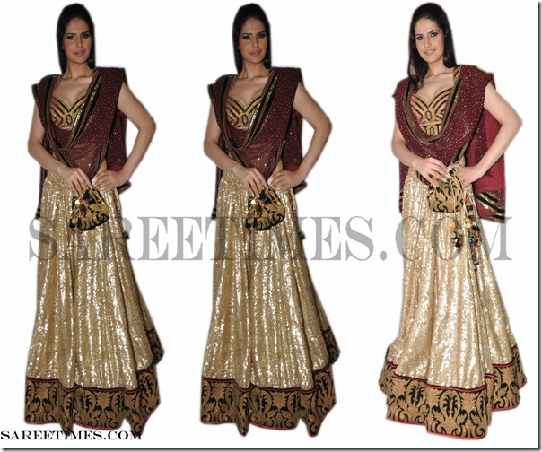 Zarine_Khan_Designer_Saree