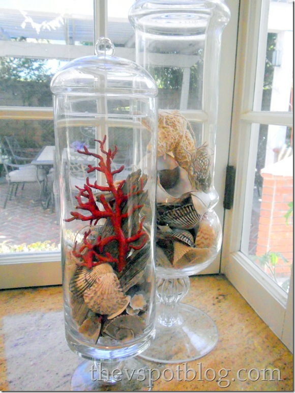 seas shells, coral, apothecary jar, decor