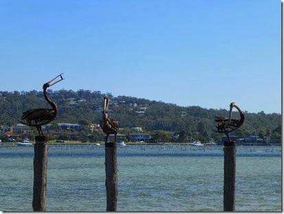 January 2014 Phillip Island 120