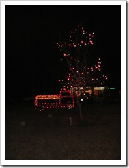 Silverhill - all decorated for Christmas